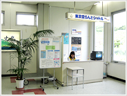 Hachijyojima Airport Helicopter Counter